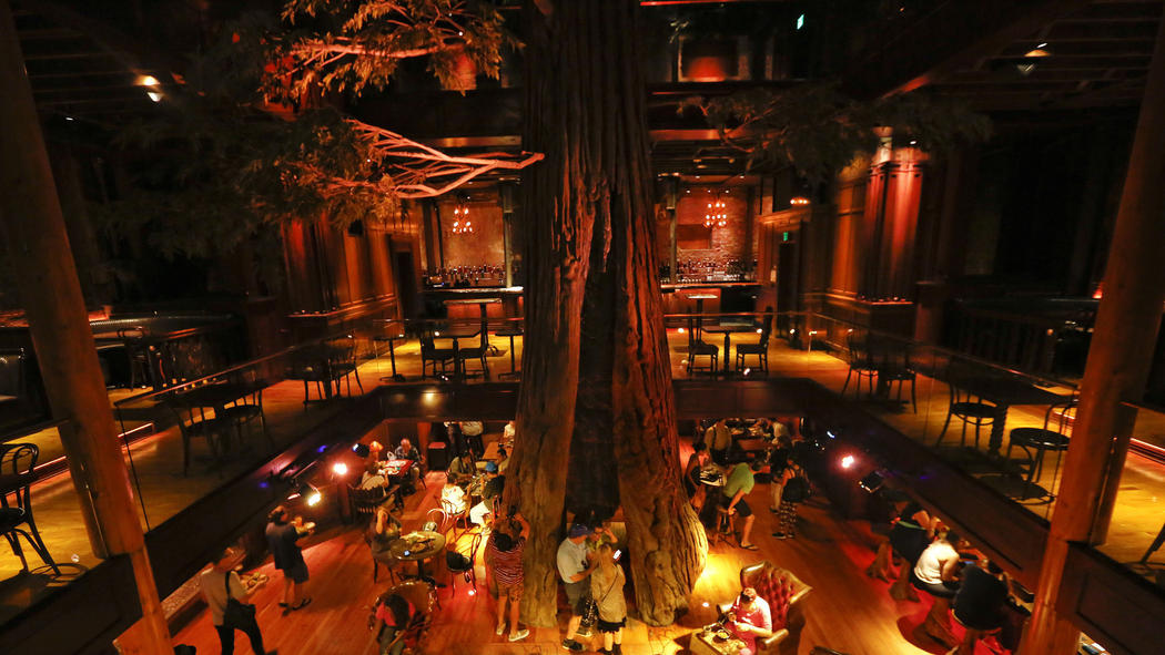 renovated clifton s introduces cafeteria noir boryanabooks
